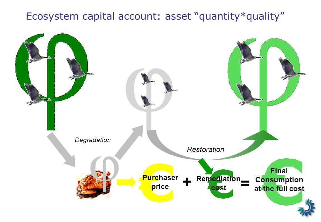Ecosystem capital account: asset quantity*quality + Purchaser price Restoration = Final Consumption at the full cost Remediation cost Degradation