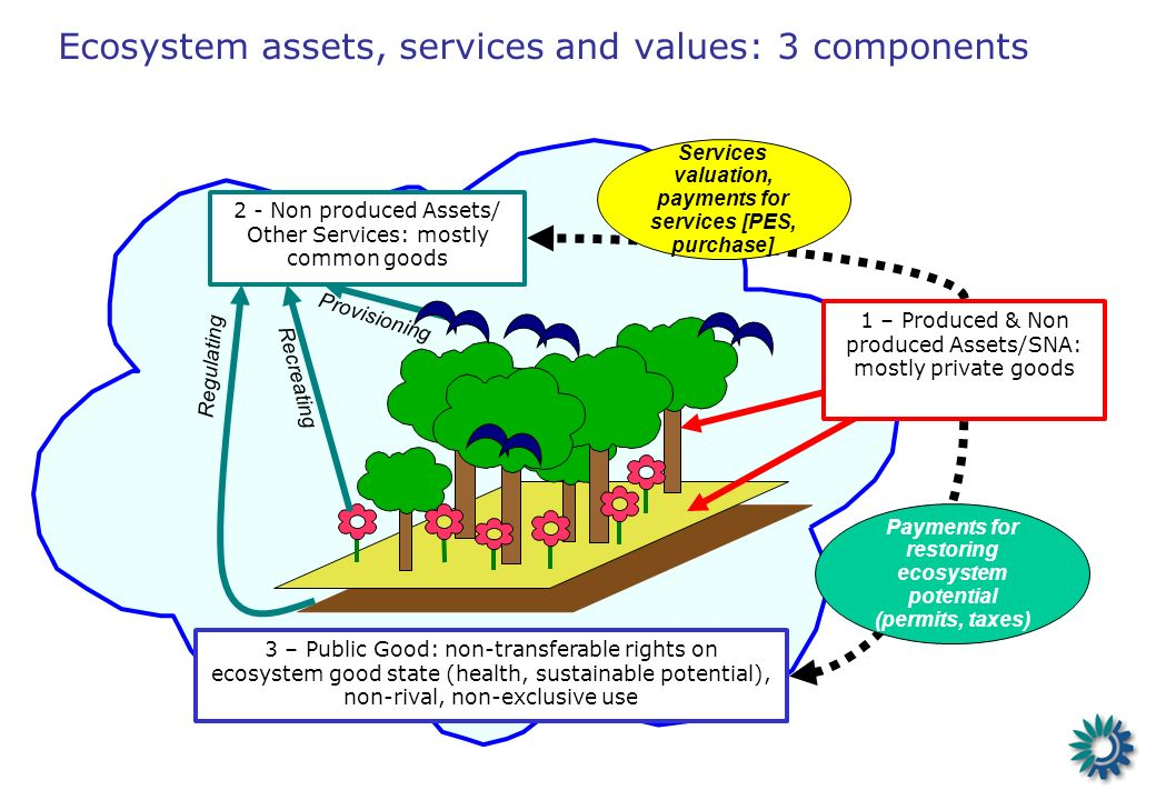 3 – Public Good: non-transferable rights on ecosystem good state (health, sustainable potential), non-rival, non-exclusive use Services valuation, pay