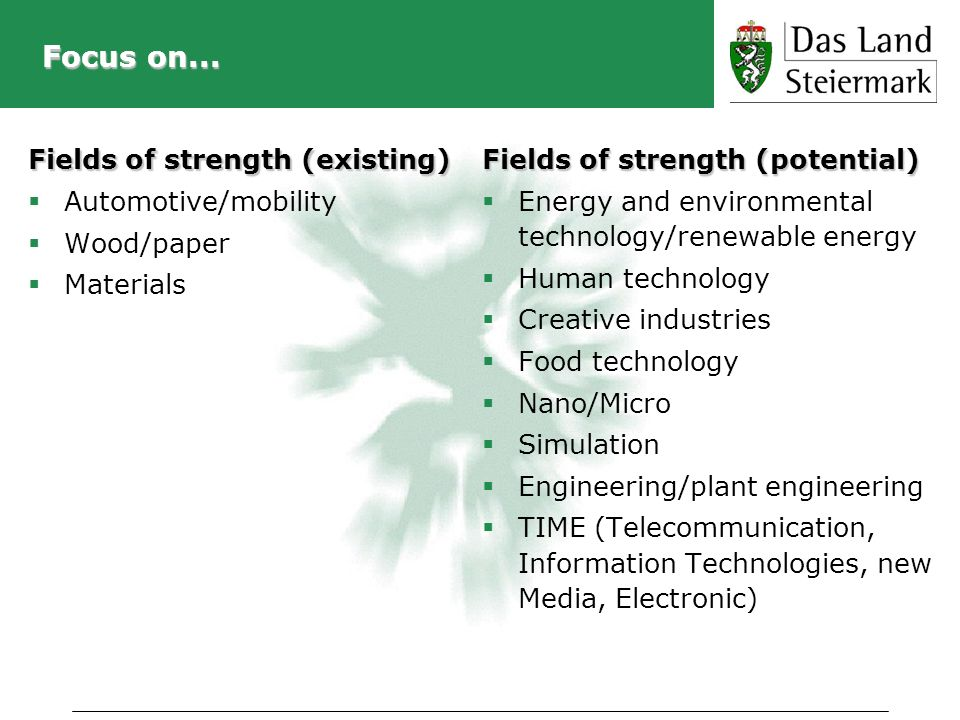 Focus on... Fields of strength (existing) Automotive/mobility Wood/paper Materials Fields of strength (potential) Energy and environmental technology/