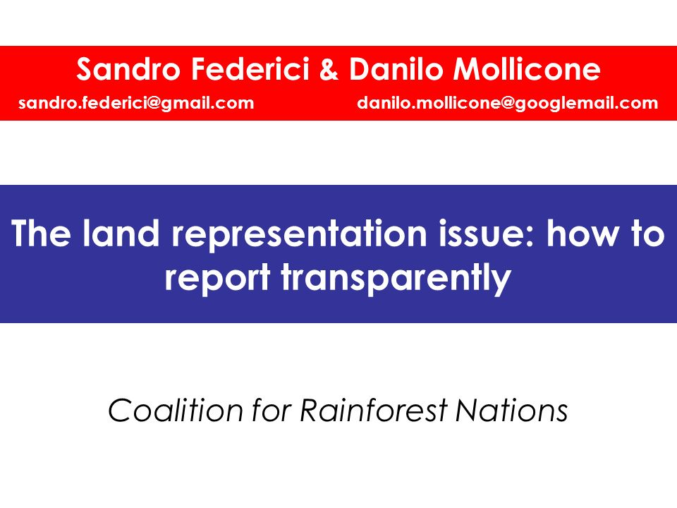 The land representation issue: how to report transparently Coalition for Rainforest Nations Sandro Federici & Danilo Mollicone sandro.federici@gmail.c