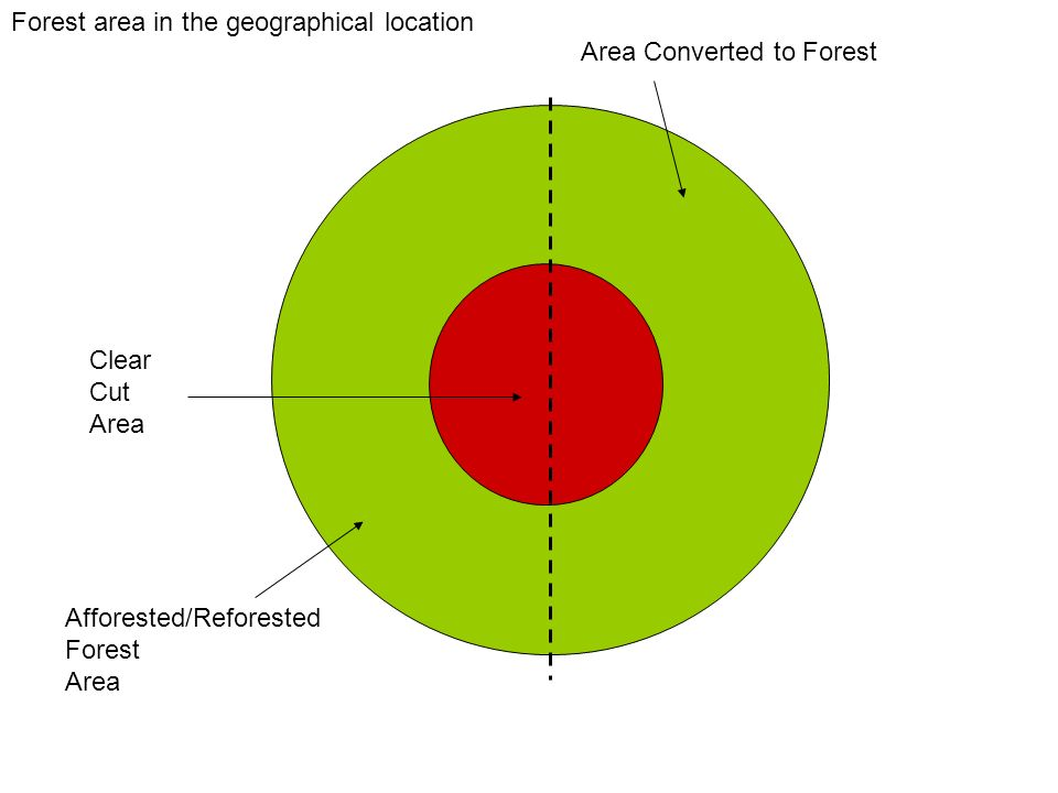 Afforested/Reforested Forest Area Clear Cut Area Forest area in the geographical location Area Converted to Forest