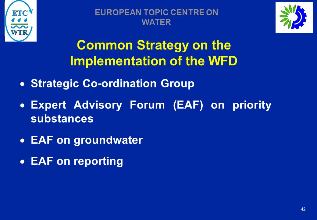 42 EUROPEAN TOPIC CENTRE ON WATER Common Strategy on the Implementation of the WFD Strategic Co-ordination Group Expert Advisory Forum (EAF) on priority substances EAF on groundwater EAF on reporting