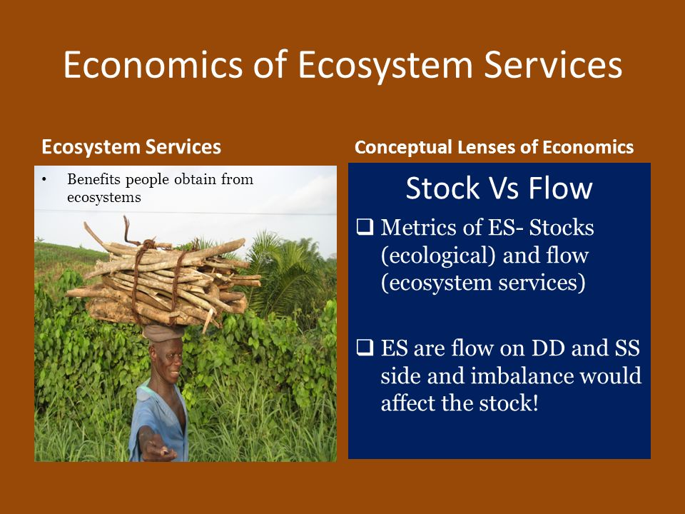 Economics of Ecosystem Services Ecosystem Services Benefits people obtain from ecosystems Conceptual Lenses of Economics Stock Vs Flow Metrics of ES-