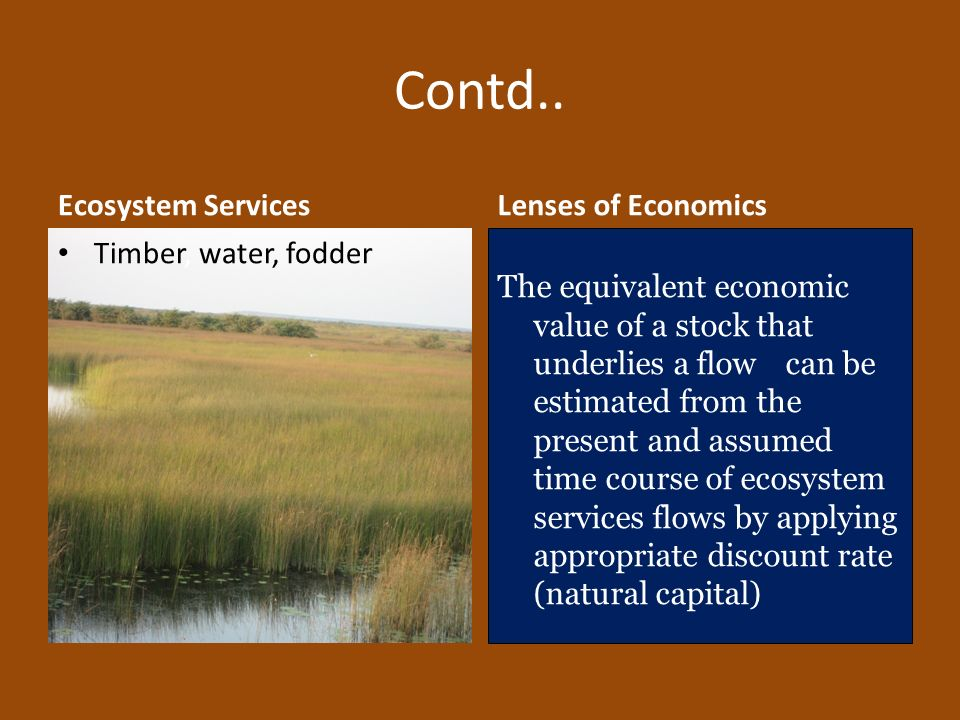 Contd.. Ecosystem Services Timber, water, fodder Lenses of Economics The equivalent economic value of a stock that underlies a flow can be estimated f