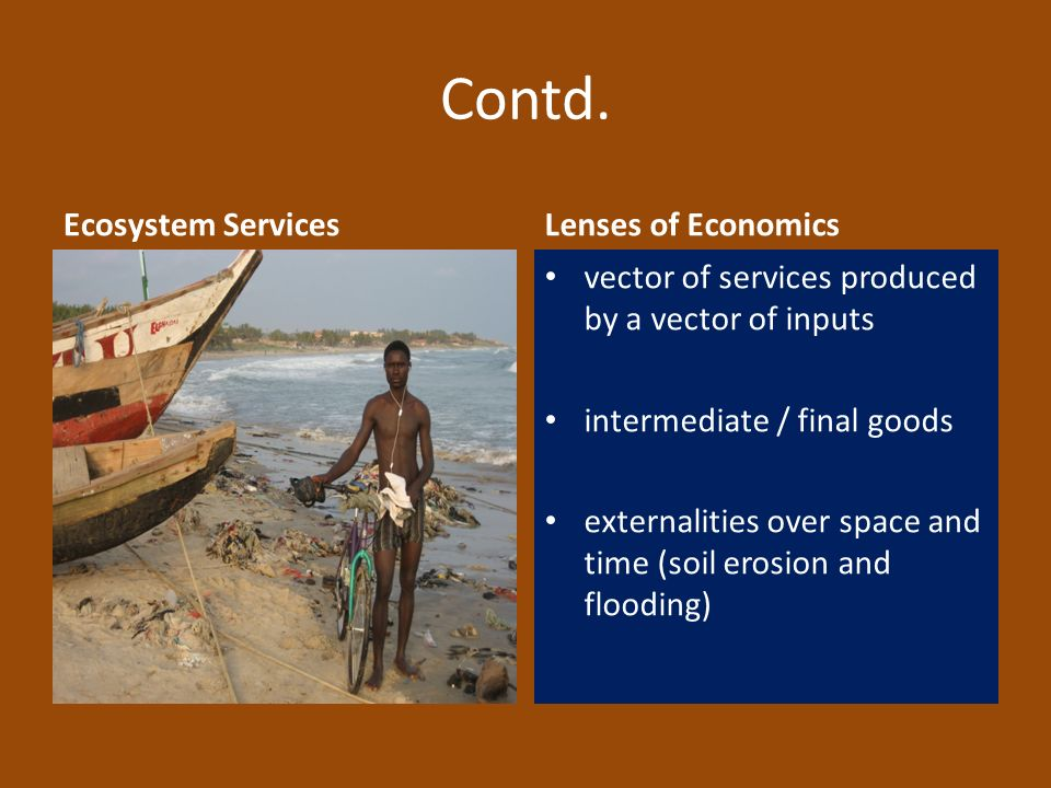 Contd. Ecosystem ServicesLenses of Economics vector of services produced by a vector of inputs intermediate / final goods externalities over space and