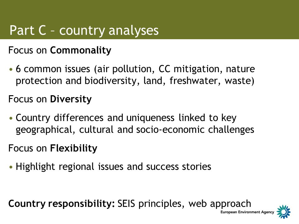 Part C – country analyses Focus on Commonality 6 common issues (air pollution, CC mitigation, nature protection and biodiversity, land, freshwater, waste) Focus on Diversity Country differences and uniqueness linked to key geographical, cultural and socio-economic challenges Focus on Flexibility Highlight regional issues and success stories Country responsibility: SEIS principles, web approach