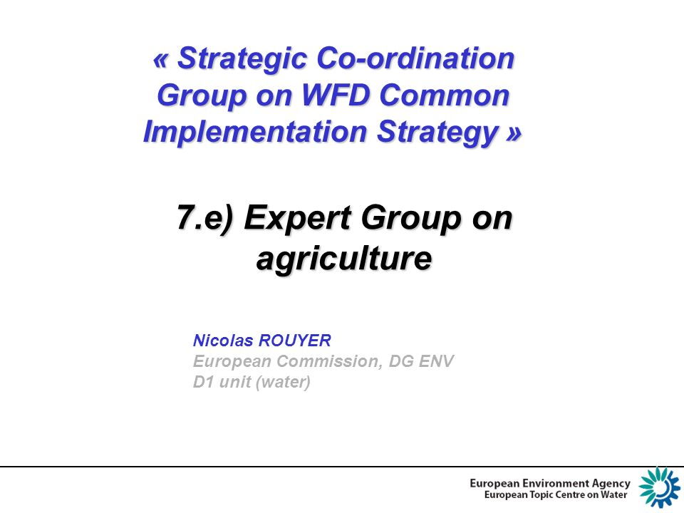 « Strategic Co-ordination Group on WFD Common Implementation Strategy » Nicolas ROUYER European Commission, DG ENV D1 unit (water) 7.e) Expert Group on agriculture