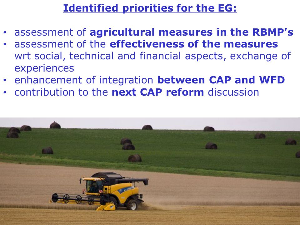 Identified priorities for the EG: assessment of agricultural measures in the RBMPs assessment of the effectiveness of the measures wrt social, technic