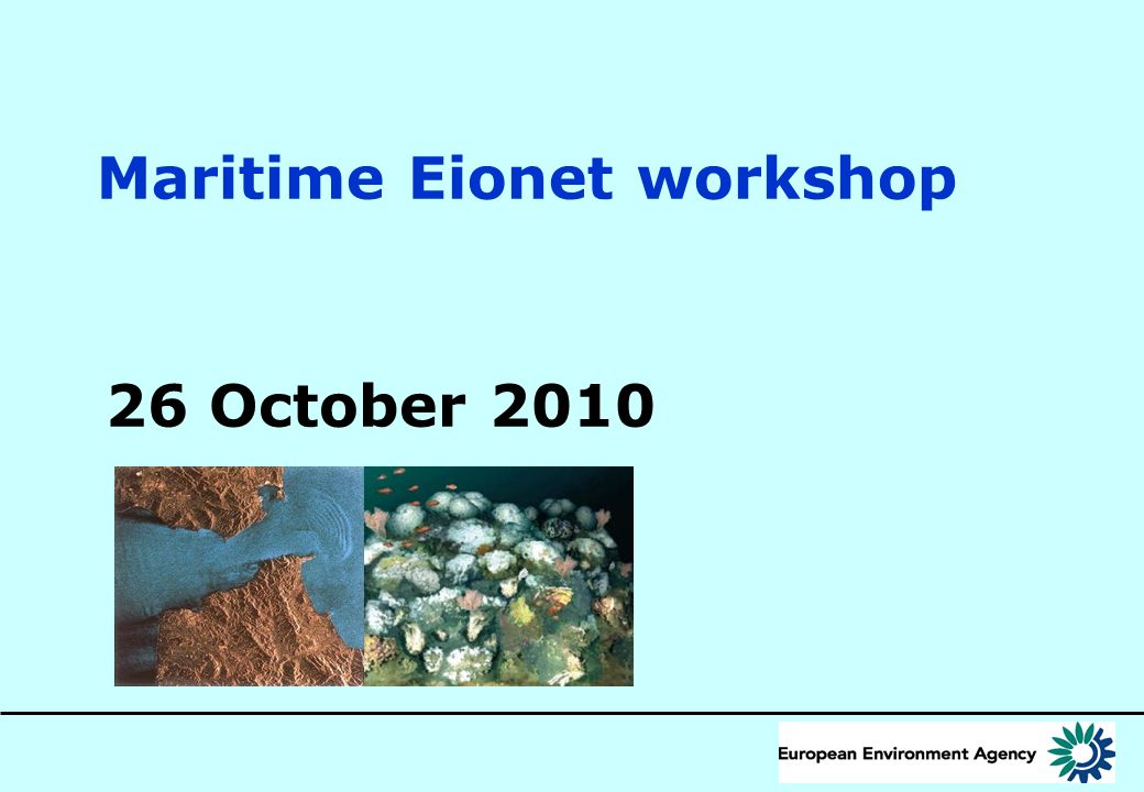12 Developing WISE-Marine (marine component of the Water Information System for Europe) MSFD & WFD data User EEA information services EEA information services Data from other Directives Data from other Directives Geo-ref.