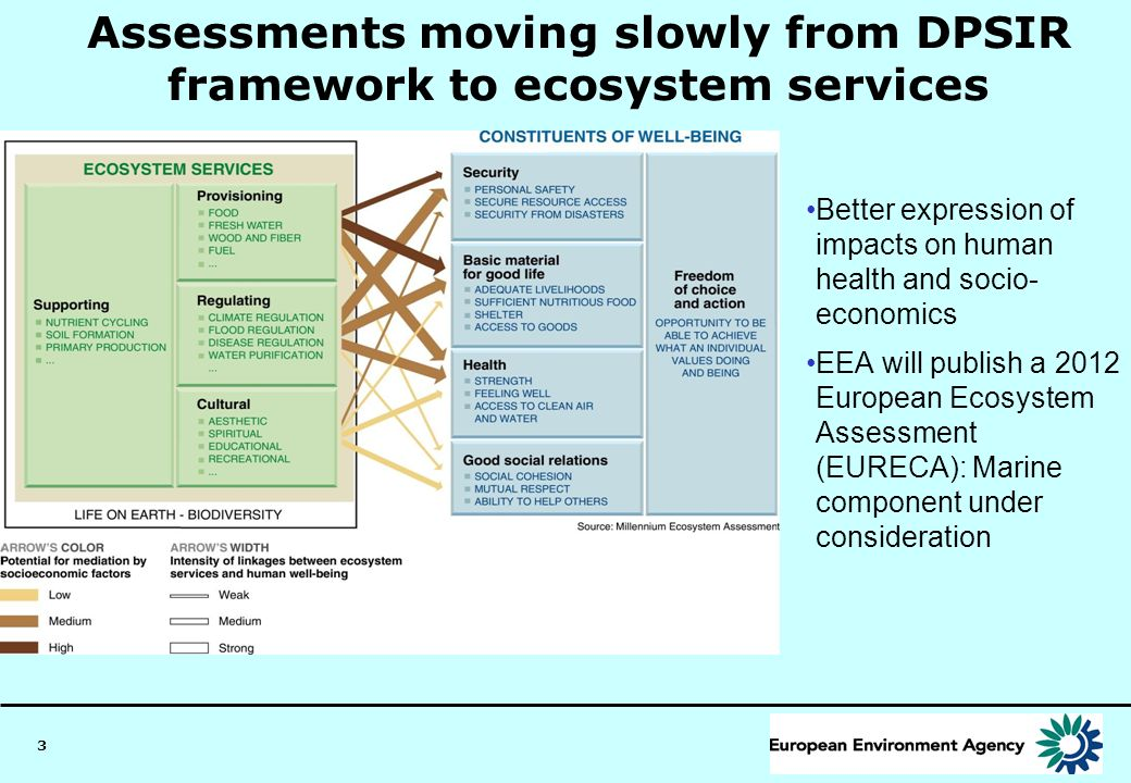 3 Assessments moving slowly from DPSIR framework to ecosystem services Better expression of impacts on human health and socio- economics EEA will publ