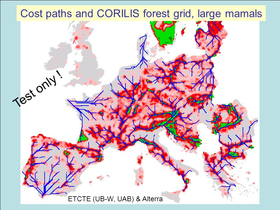 Cost paths and CORILIS forest grid, large mamals Test only ! ETCTE (UB-W, UAB) & Alterra