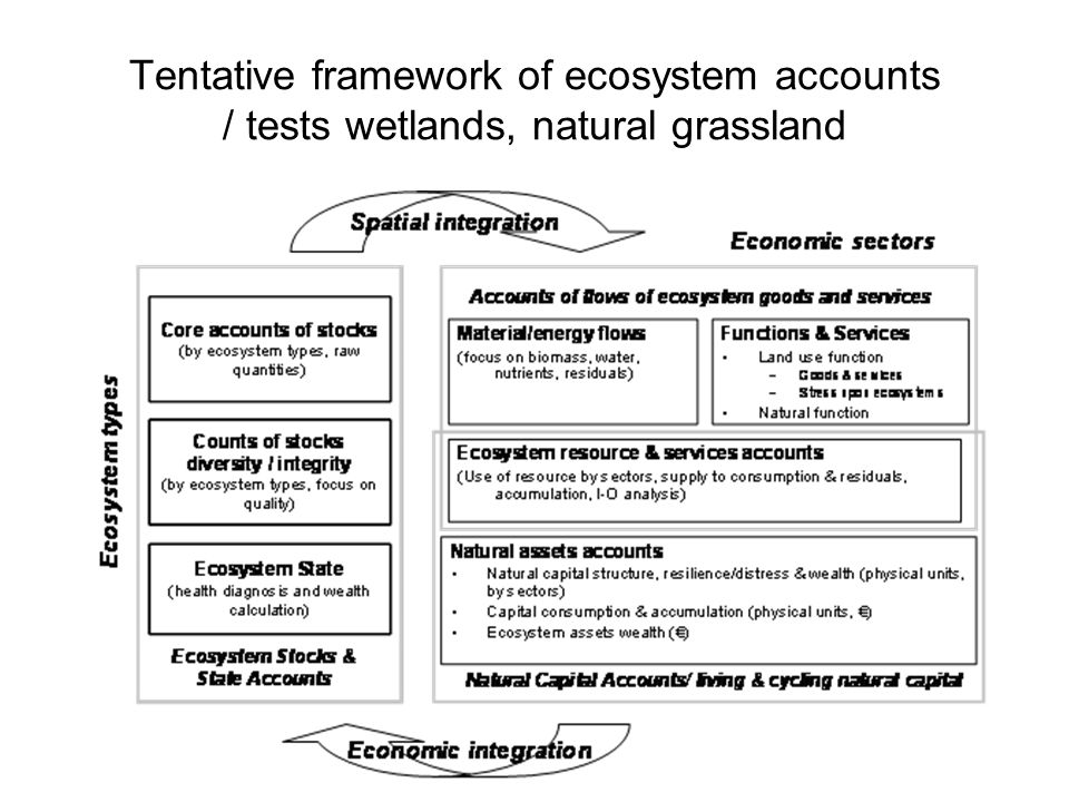 Tentative framework of ecosystem accounts / tests wetlands, natural grassland