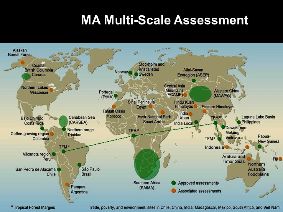 MA Multi-Scale Assessment