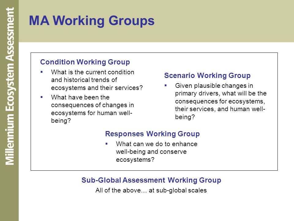 MA Working Groups Scenario Working Group Given plausible changes in primary drivers, what will be the consequences for ecosystems, their services, and