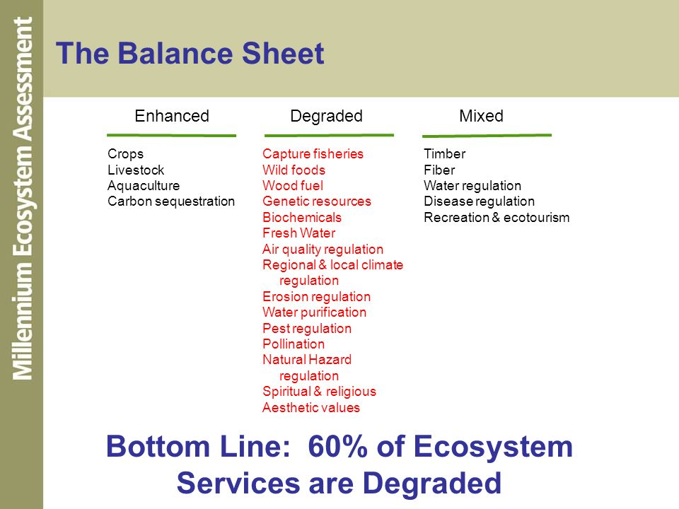The Balance Sheet Crops Livestock Aquaculture Carbon sequestration Capture fisheries Wild foods Wood fuel Genetic resources Biochemicals Fresh Water A