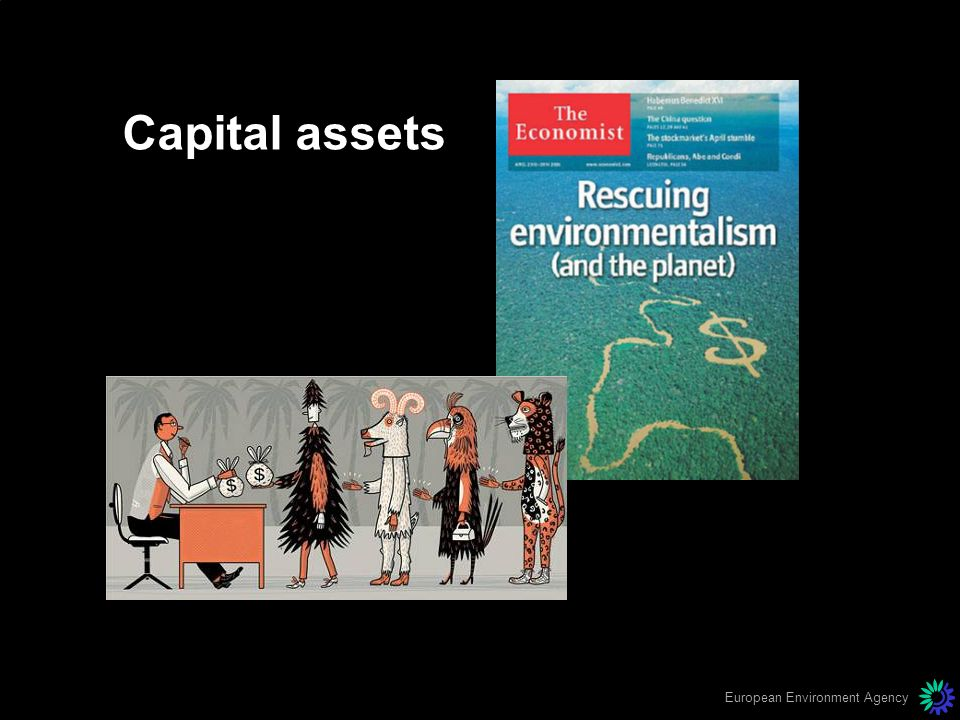 European Environment Agency Capital assets