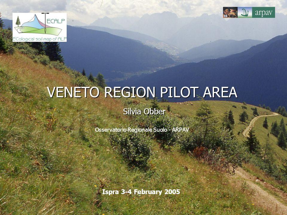 VENETO REGION PILOT AREA Silvia Obber VENETO REGION PILOT AREA Silvia Obber Osservatorio Regionale Suolo - ARPAV Ispra 3-4 February 2005