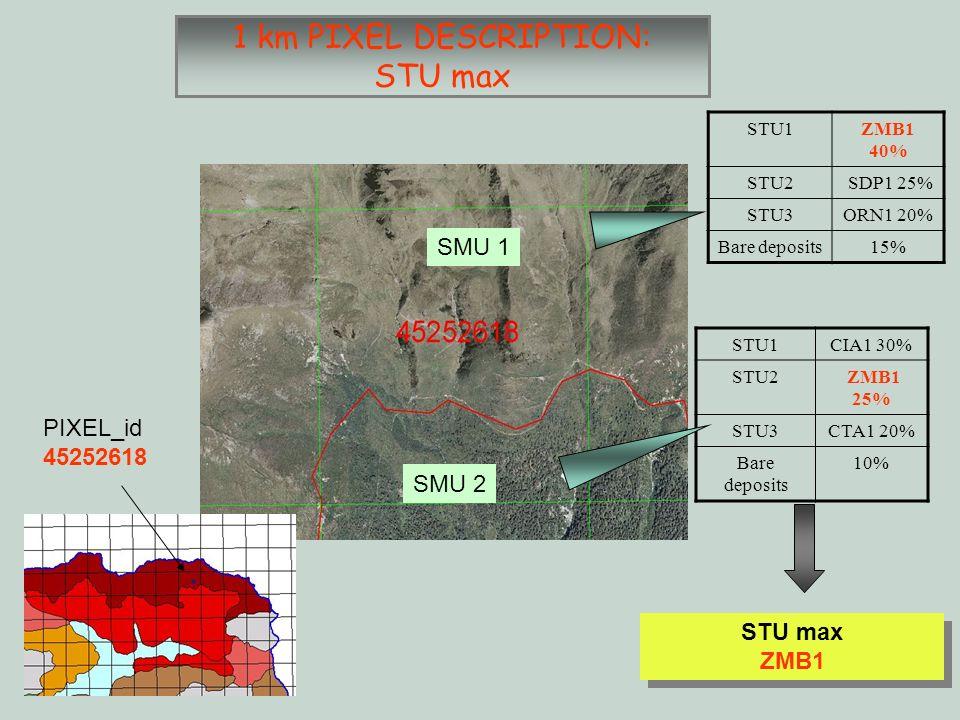 SMU 2 SMU 1 1 km PIXEL DESCRIPTION: STU max STU1ZMB1 40% STU2 SDP1 25% STU3ORN1 20% Bare deposits15% STU1CIA1 30% STU2 ZMB1 25% STU3CTA1 20% Bare deposits 10% STU max ZMB1 STU max ZMB1 PIXEL_id 45252618