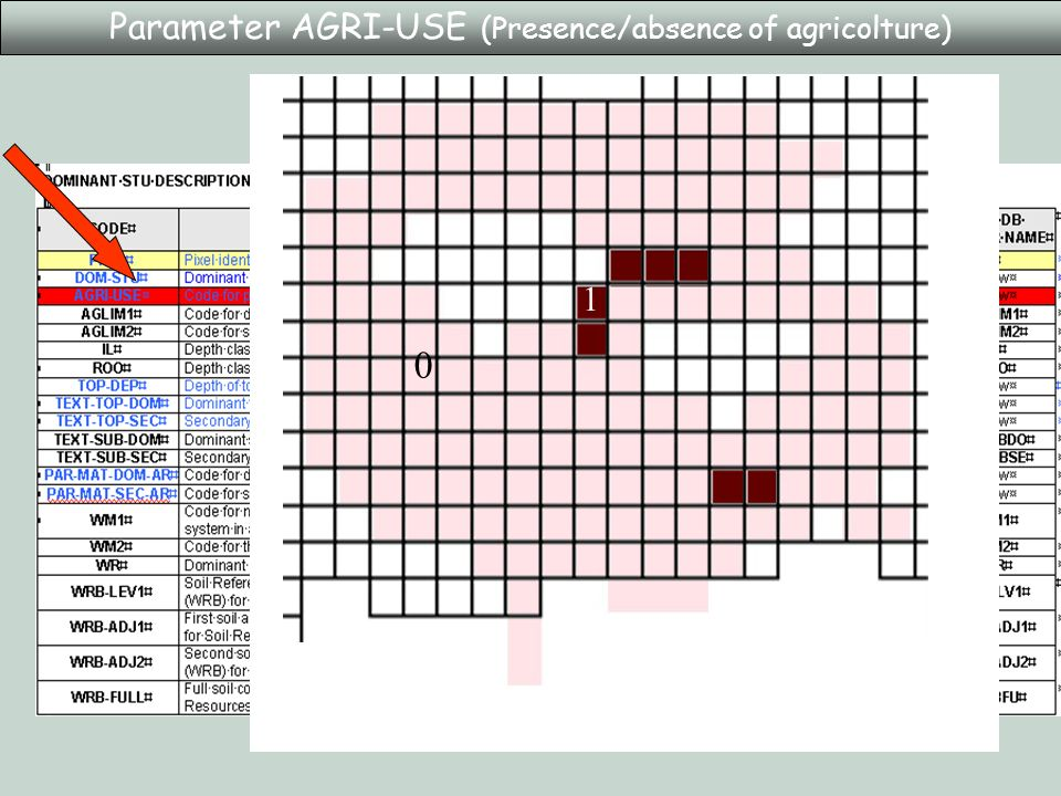 Parameter AGRI-USE (Presence/absence of agricolture) 0 1