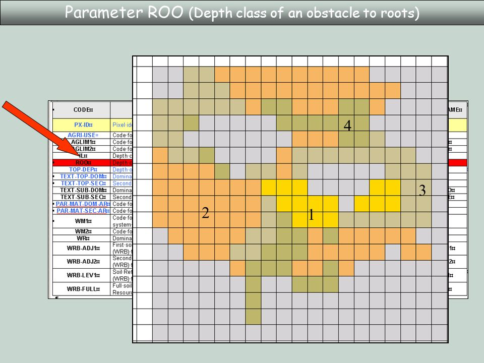 Parameter ROO (Depth class of an obstacle to roots) 2 4 3 1