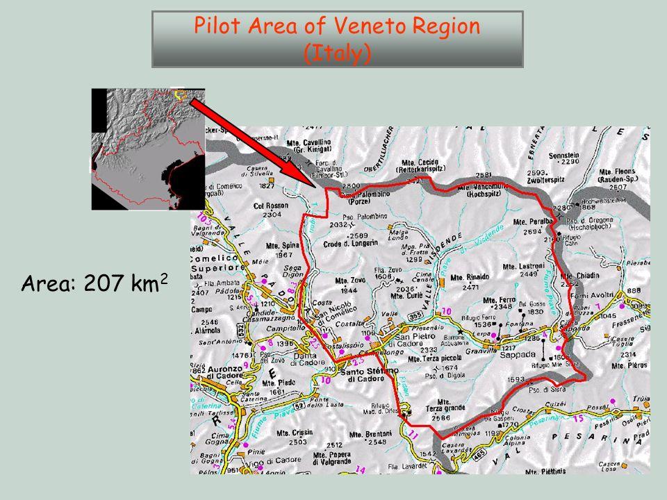 Area: 207 km 2 Pilot Area of Veneto Region (Italy)