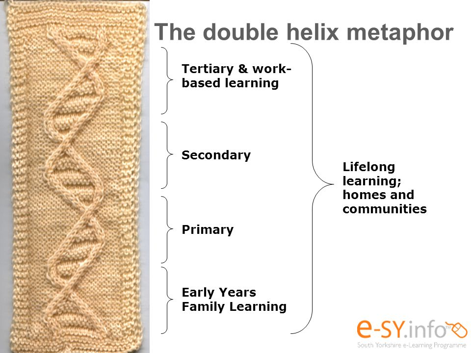 The double helix metaphor Early Years Family Learning Primary Secondary Tertiary & work- based learning Lifelong learning; homes and communities