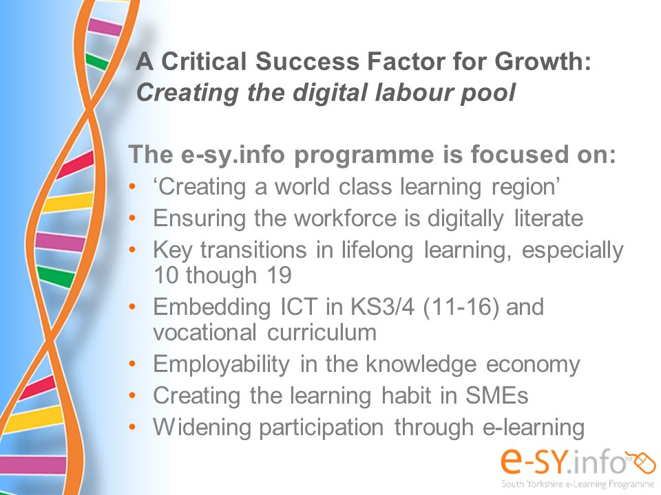 A Critical Success Factor for Growth: Creating the digital labour pool The e-sy.info programme is focused on: Creating a world class learning region E