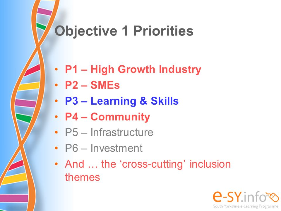 Objective 1 Priorities P1 – High Growth Industry P2 – SMEs P3 – Learning & Skills P4 – Community P5 – Infrastructure P6 – Investment And … the cross-c