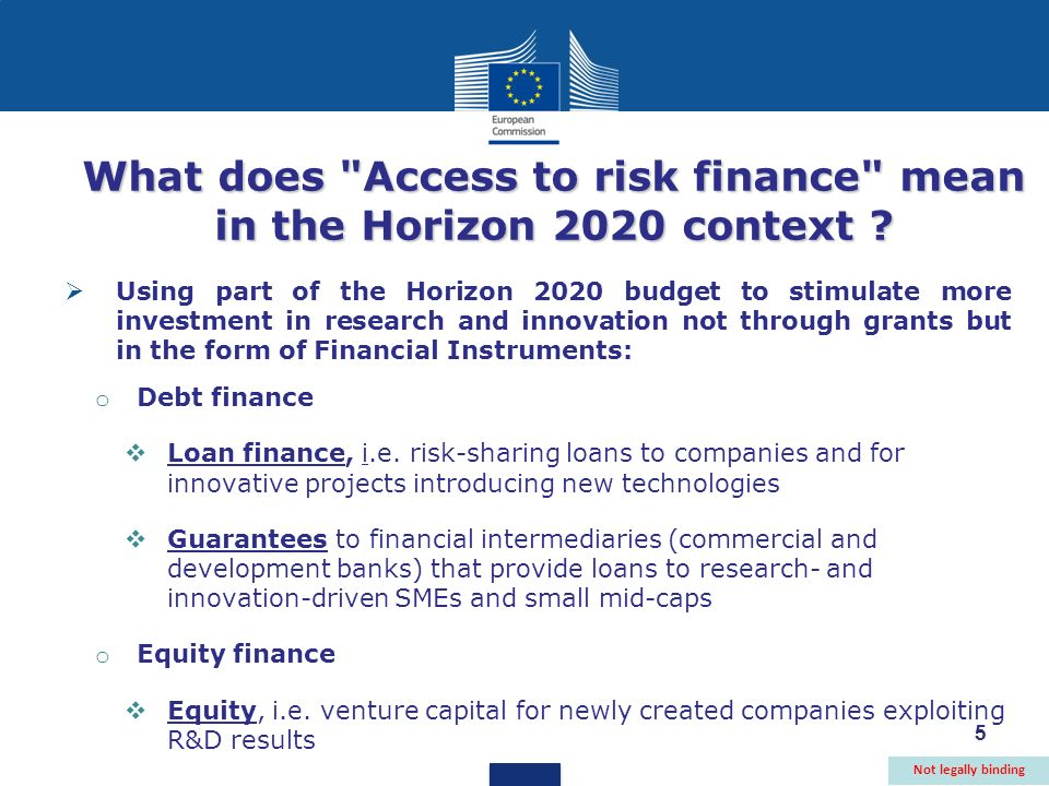 5 What does Access to risk finance mean in the Horizon 2020 context .