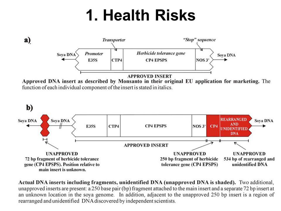 1. Health Risks