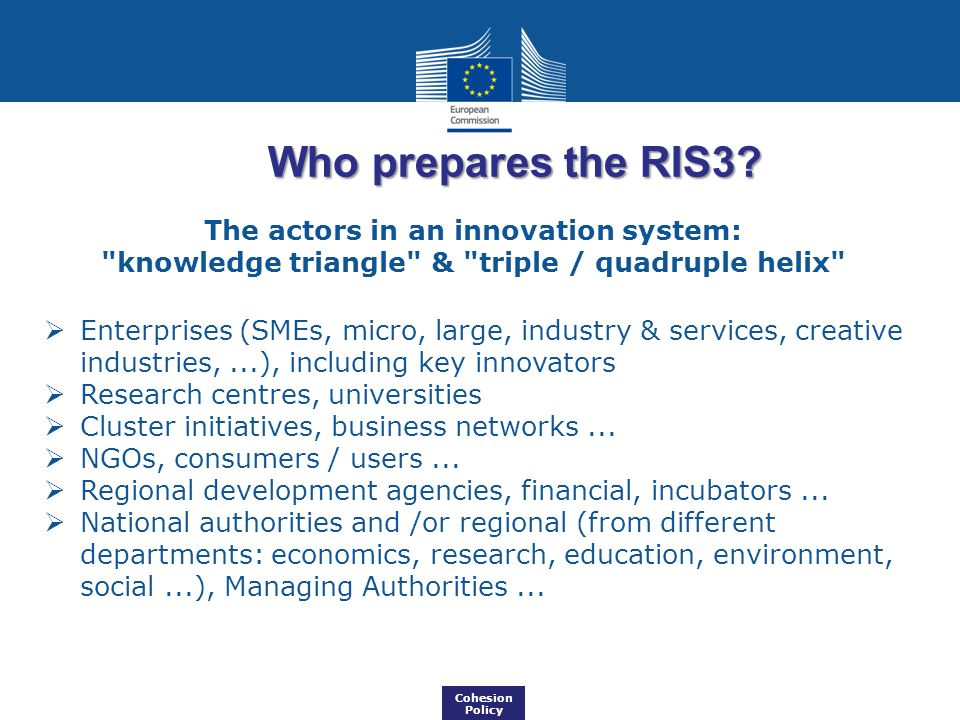 Who prepares the RIS3.