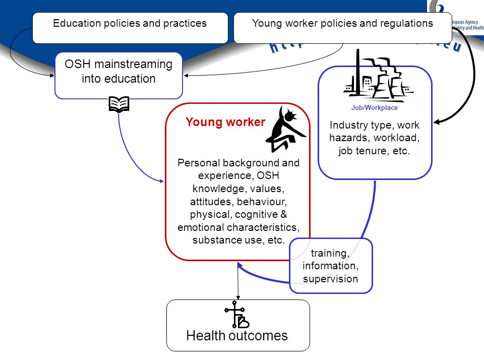 Job/Workplace Industry type, work hazards, workload, job tenure, etc. Young worker Young worker policies and regulations OSH mainstreaming into educat