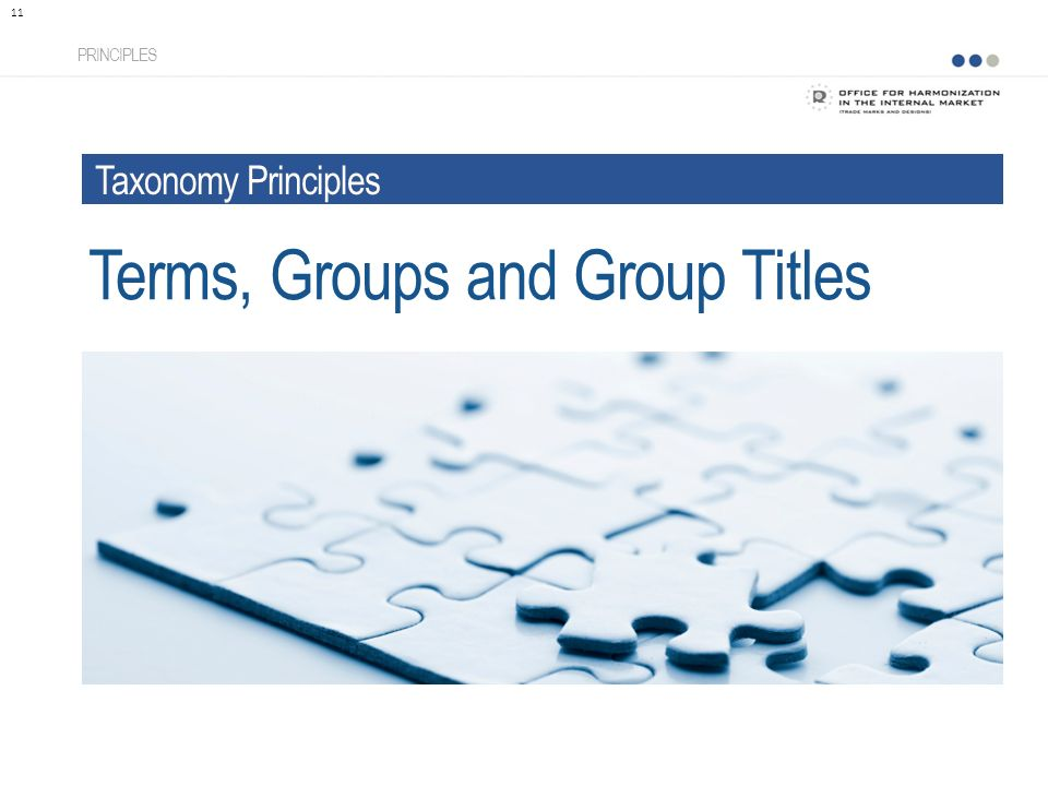 Terms, Groups and Group Titles PRINCIPLES 11 Taxonomy Principles