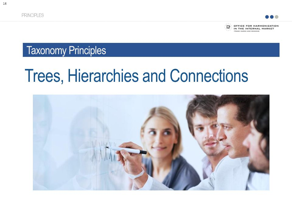 Trees, Hierarchies and Connections PRINCIPLES 16 Taxonomy Principles