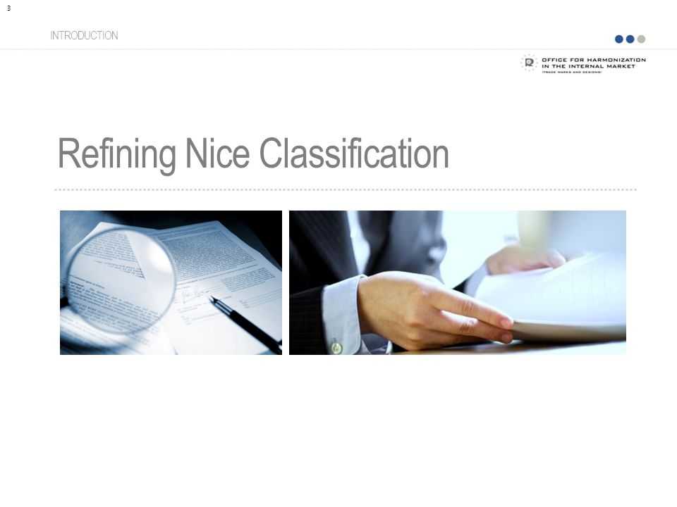 Refining Nice Classification INTRODUCTION 3