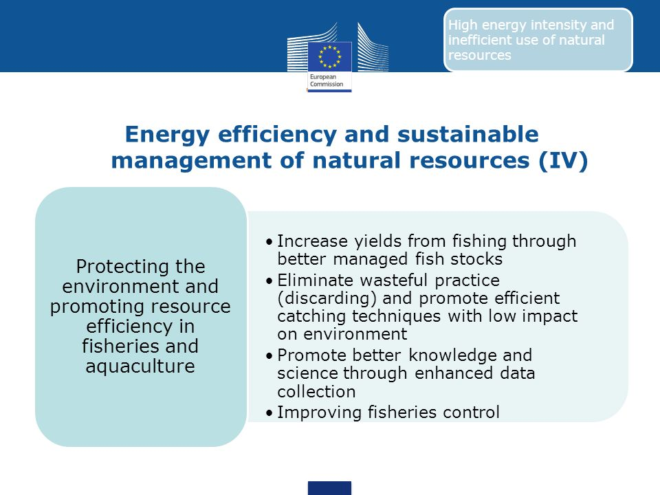 Energy efficiency and sustainable management of natural resources (IV) Increase yields from fishing through better managed fish stocks Eliminate waste