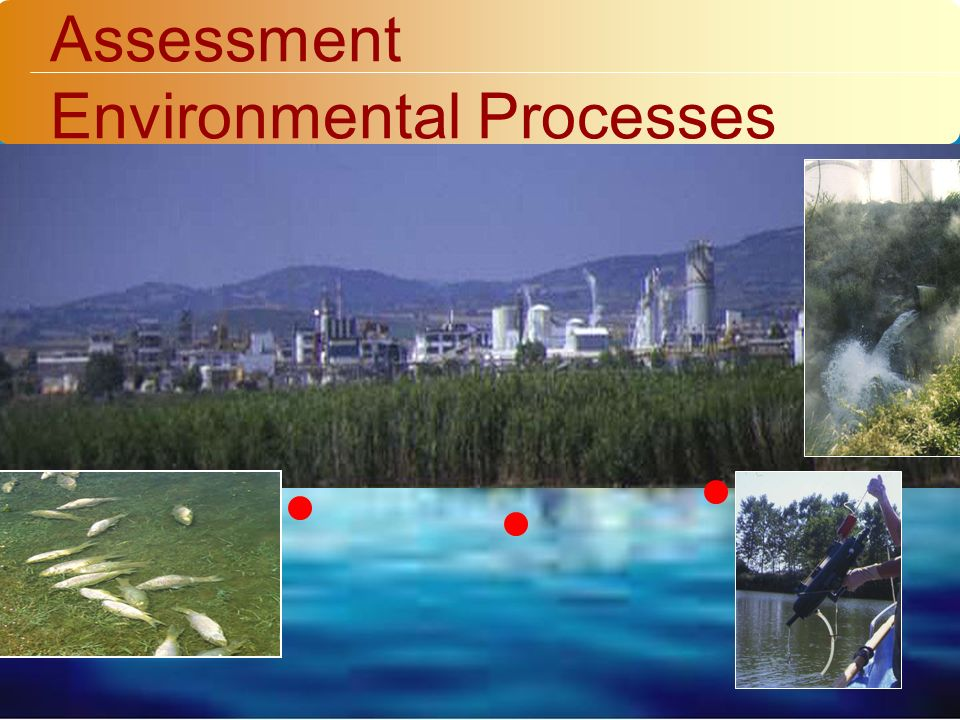 Assessment Environmental Processes