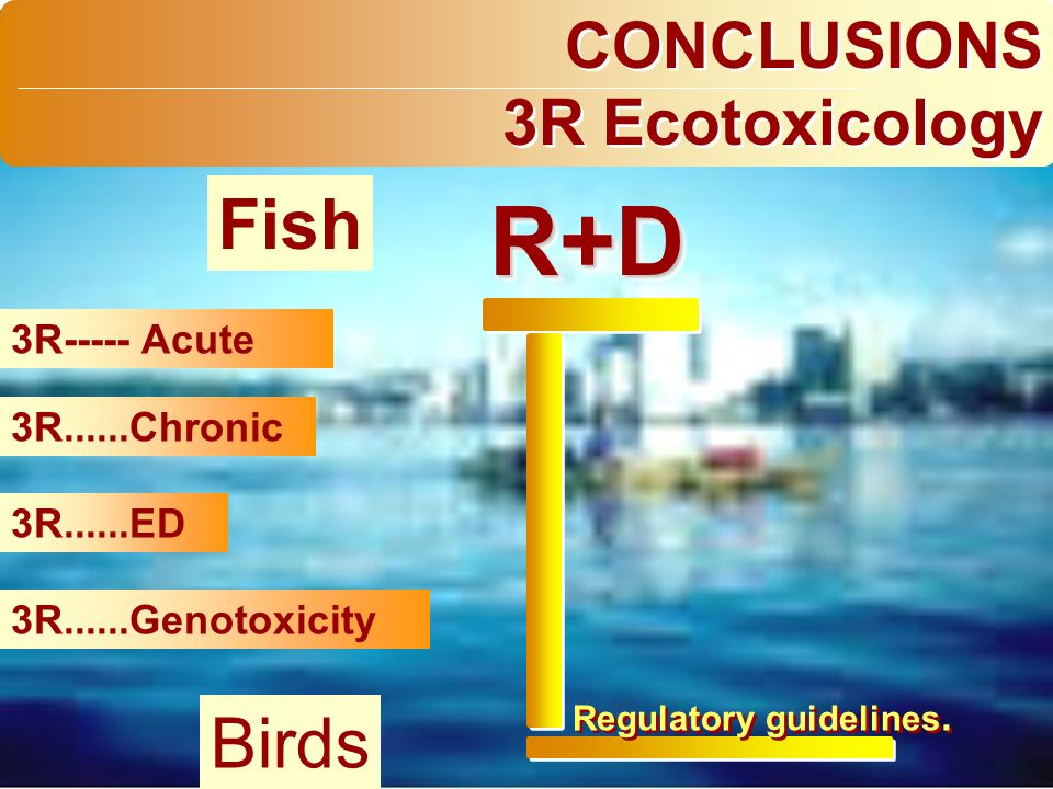CONCLUSIONS 3R Ecotoxicology CONCLUSIONS 3R Ecotoxicology 3R----- Acute 3R......Chronic 3R......ED 3R......Genotoxicity R+DR+D Regulatory guidelines.
