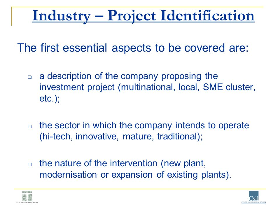 Industry – Project Identification The first essential aspects to be covered are: a description of the company proposing the investment project (multin