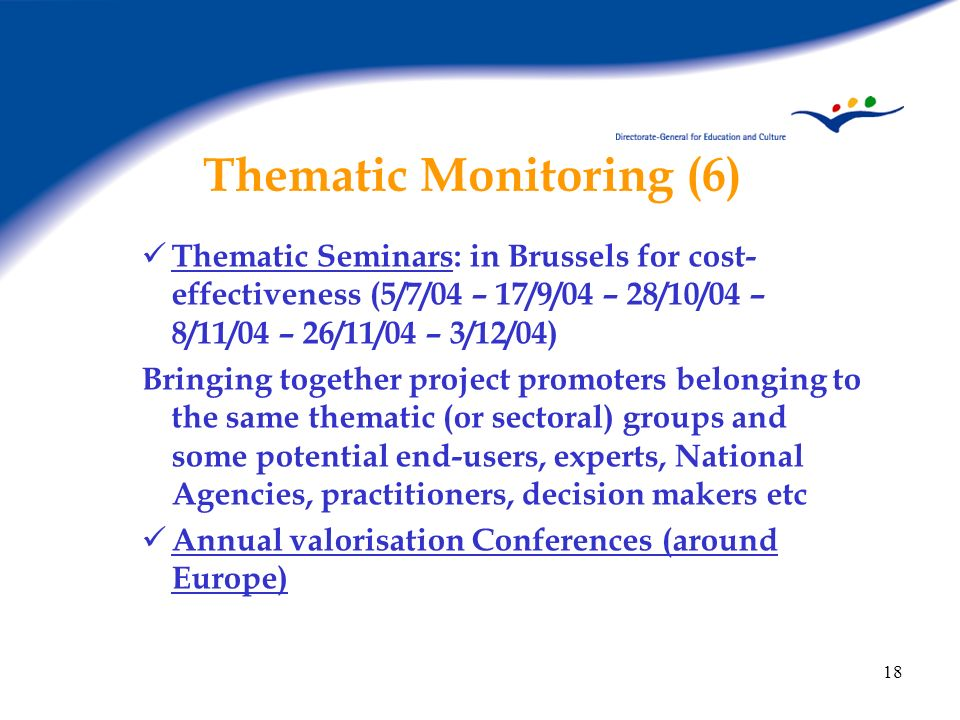 18 Thematic Monitoring (6) Thematic Seminars: in Brussels for cost- effectiveness (5/7/04 – 17/9/04 – 28/10/04 – 8/11/04 – 26/11/04 – 3/12/04) Bringin