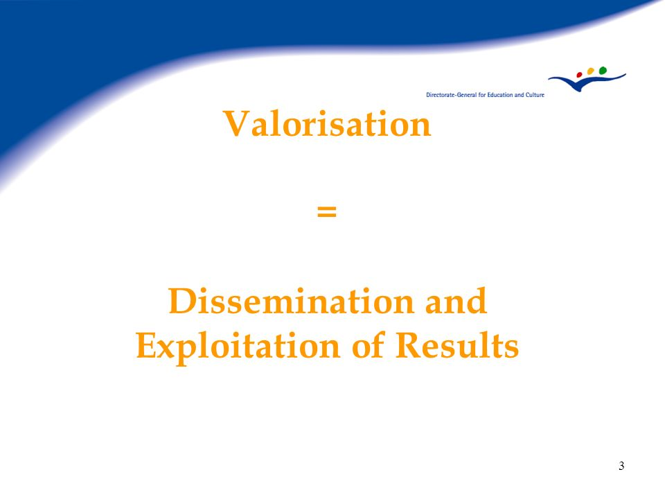24 LdV 2005-2006 New Call for Proposals Ex-ante valorisation becomes compulsory A valorisation plan to be explicited in the proposal Therafter to be updated during the lifetime of the project