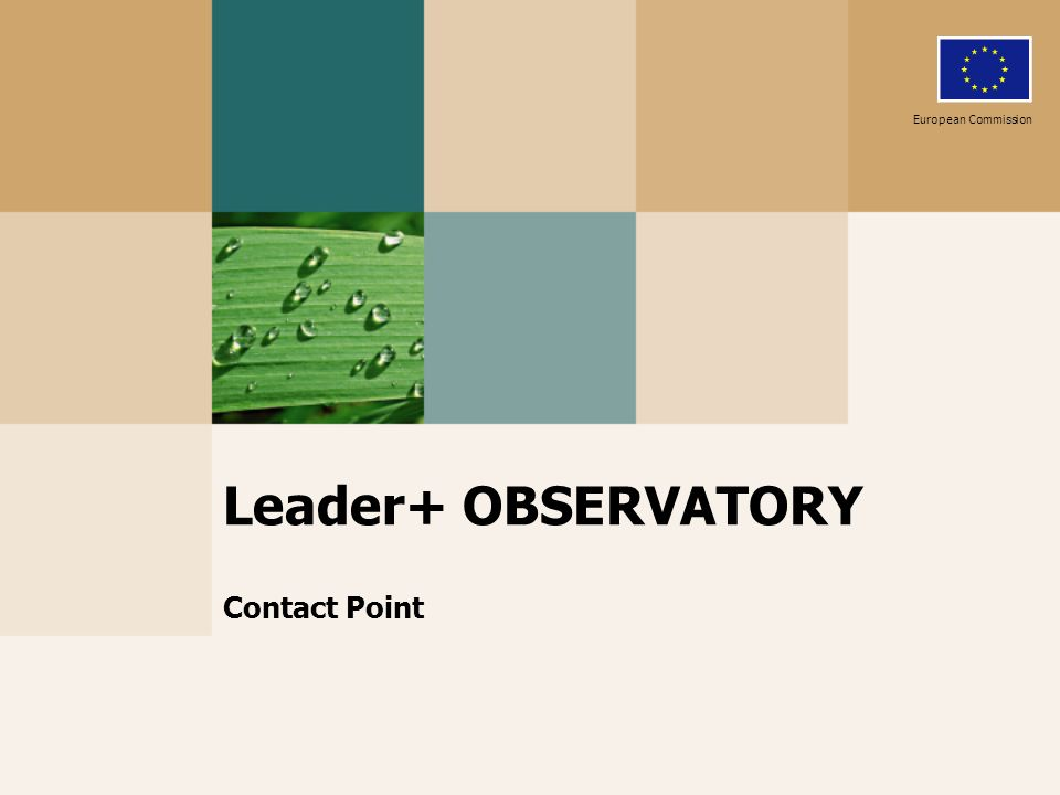 Leader+ OBSERVATORY Contact Point European Commission