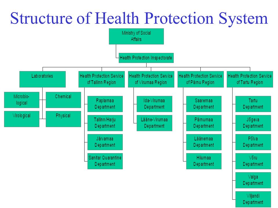 Structure of Health Protection System