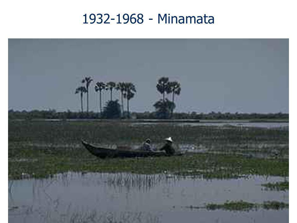 1932-1968 - Minamata 7