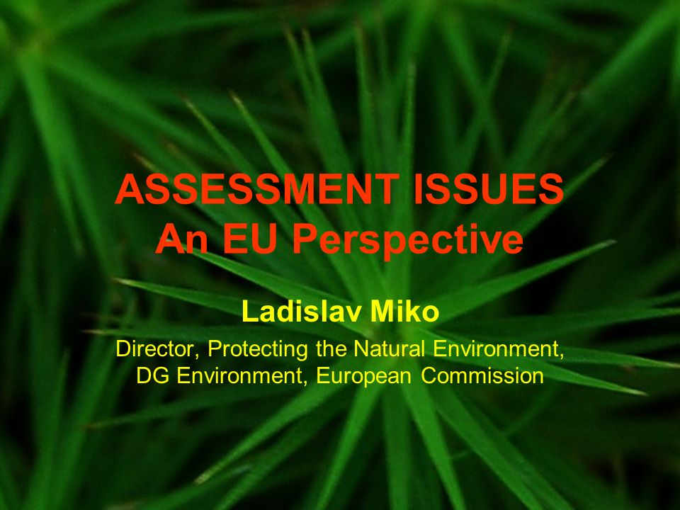 ASSESSMENT ISSUES An EU Perspective Ladislav Miko Director, Protecting the Natural Environment, DG Environment, European Commission