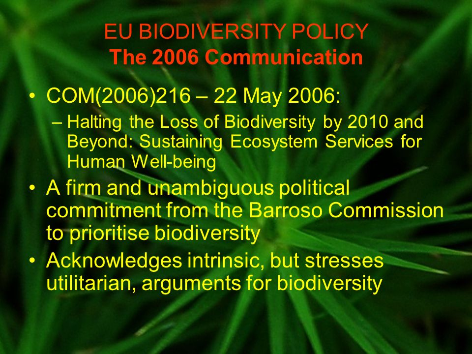 EU BIODIVERSITY POLICY The 2006 Communication COM(2006)216 – 22 May 2006: –Halting the Loss of Biodiversity by 2010 and Beyond: Sustaining Ecosystem S
