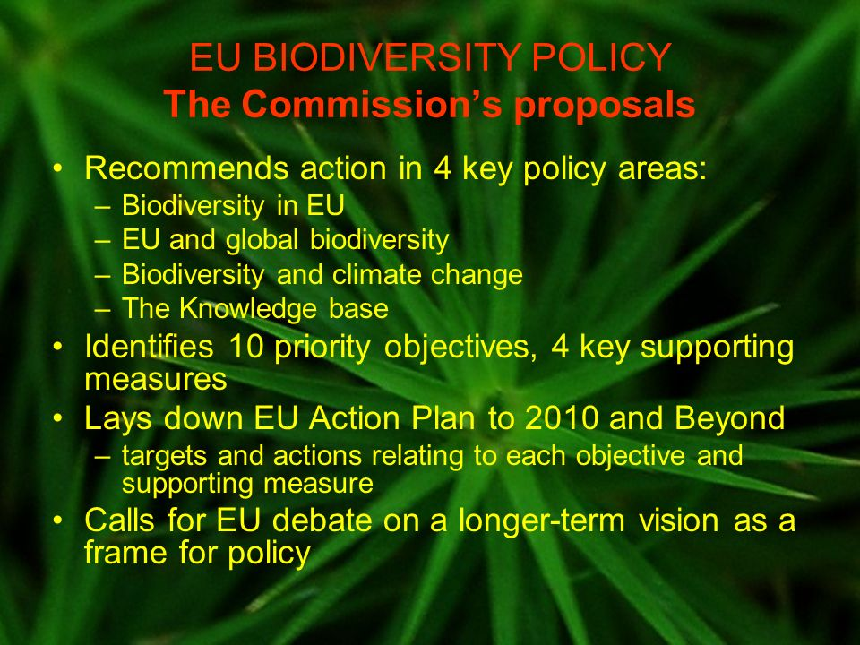 EU BIODIVERSITY POLICY Monitoring, evaluation, reporting Communication makes specific provisions: –Reports to end 2008, to end 2010, and to end 2013 –Reports will provide evaluation of progress towards the targets to include: Qualitative assessment of extent to which targets achieved Quantitative data relating to set of headline indicators –Explicit link to broader EU policy cycle: Reports to inform EU policies and budgets for post-2013 period