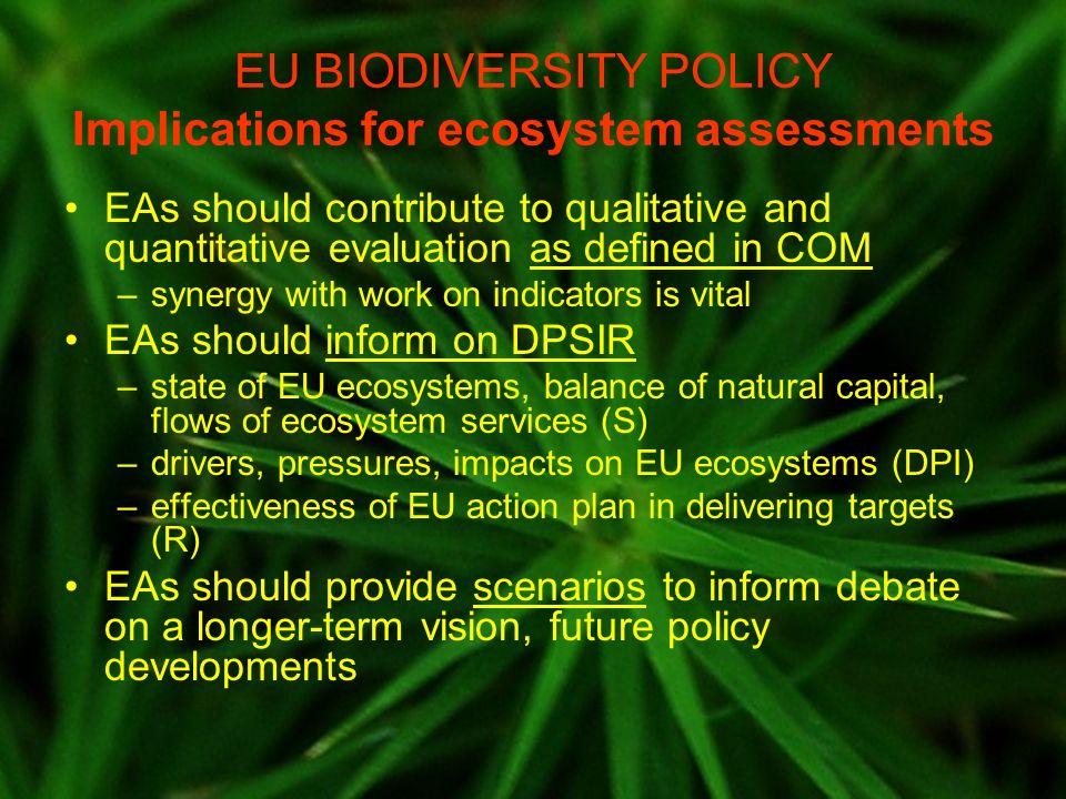EU BIODIVERSITY POLICY Implications for ecosystem assessments EAs should contribute to qualitative and quantitative evaluation as defined in COM –syne