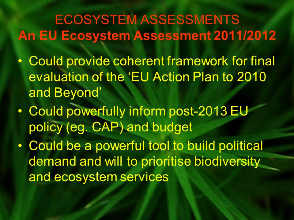 ECOSYSTEM ASSESSMENTS An EU Ecosystem Assessment 2011/2012 Could provide coherent framework for final evaluation of the EU Action Plan to 2010 and Beyond Could powerfully inform post-2013 EU policy (eg.