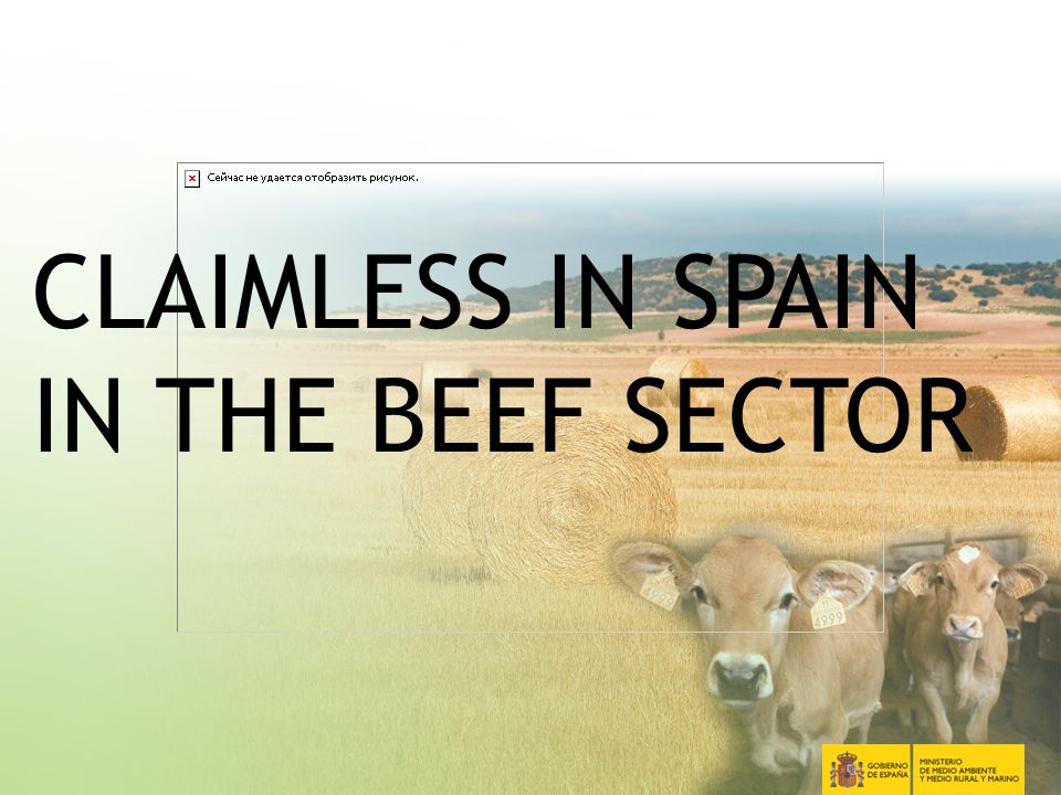 2 CLAIMLESS IN SPAIN IN THE BEEF SECTOR
